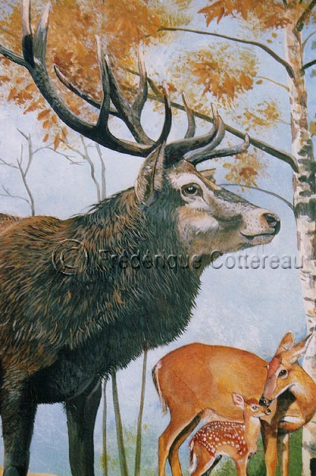 Sa majesté, le roi de la forêt