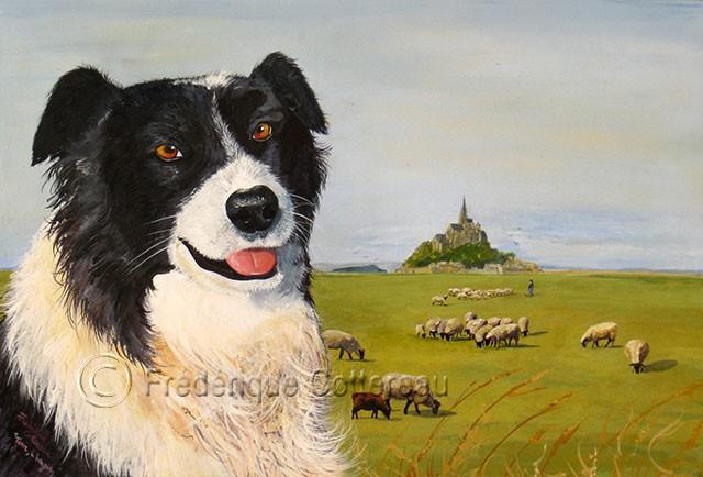 Tom et ses moutons